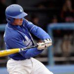 規定打席に未満の野球のバッターの打率は、なぜ認められないのか大数の法則で考える